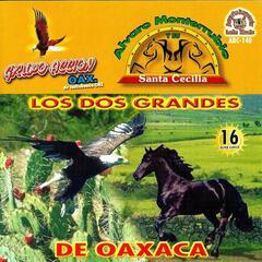 Los Dos Grandes De Oaxaca 16 Super Exitos