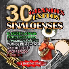 30 Grandes Exitos Con Banda