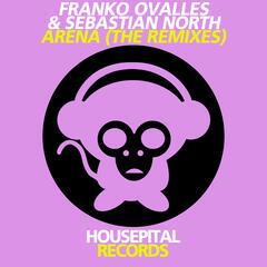 Arena (The Remixes)