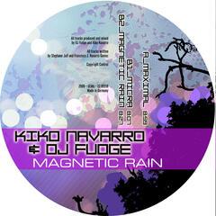Magnetic Rain