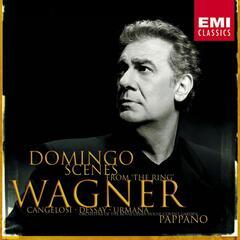 Wagner : Scenes/Domingo, Pappano