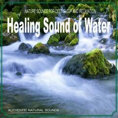 Healing Sound of Water (Nature Sounds)