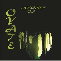 Journey of Oyate