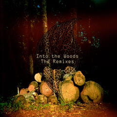 Into The Woods - The Remixes