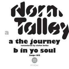The Journey/In Yo Soul
