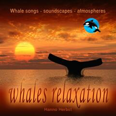WHALES relaxation - whales songs, soundscapes, atmospheres