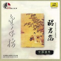Gold Finger: Chinese Yangqin