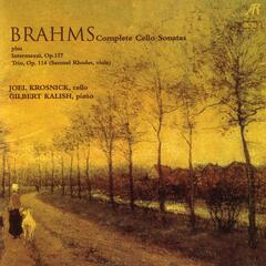 Brahms: Complete Cello Sonatas Plus Intermezzi, Op. 117, And Trio In A Minor, Op. 114
