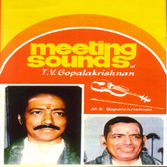 Meeting Sounds Of T.V.Gopalakrishnan