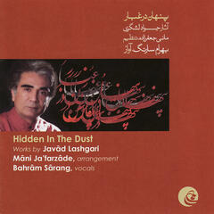 Hidden in The Dust(Works By Javâd Lashgari)