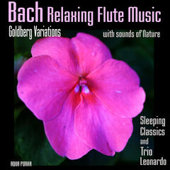 Bach Relaxing Flute Music - Goldberg Variations with Sounds of Nature, for Deep Sleep, Meditation, Relaxation, Massage,Yoga.