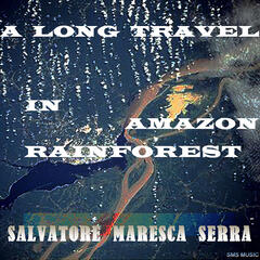 A Long Travel In Amazon Rainforest