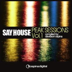 Say House - Peak Sessions Vol. 1