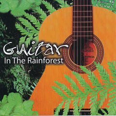 Guitar In The Rainforest