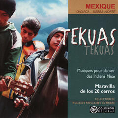 Tekuas: Mixe Indian dancing music