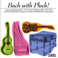 Bach With Pluck! The Six Trio Sonatas BWV 525-530