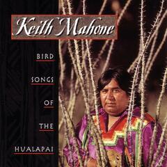 Bird Songs Of The Hualapai