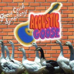 Acoustic Goose