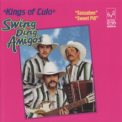 Swing Ding Amigos