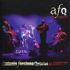 Antonio Forcione Quartet: In Concert
