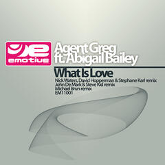 What is love (feat. Abigail Bailey)