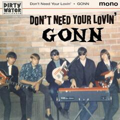 Don't Need Your Lovin'