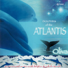 Dolphins of the Atlantis