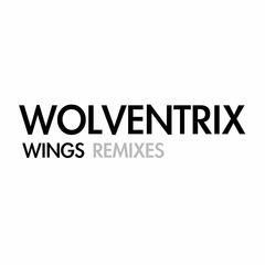 Wings (Remixes)
