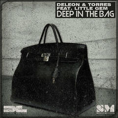Deep in the Bag - EP