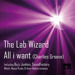 All i want (Charlies groove)