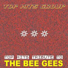 Top Hits Tribute to The Bee Gees