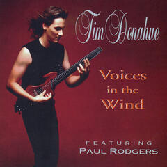Voices in the Wind (feat. Paul Rodgers)