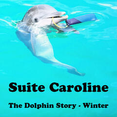 The Dolphin Story - Winter