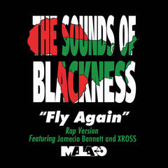 Fly Again (Rap Version) - Single