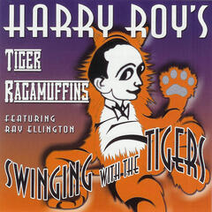 Swinging With The Tigers