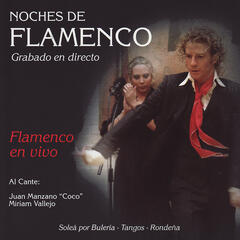 Noches de Flamenco - Flamenco en Vivo