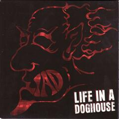 Life In a Doghouse