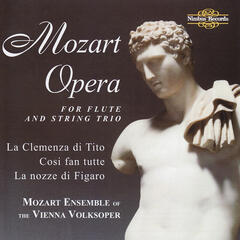 Mozart Opera, arranged for flute and string trio