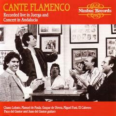 Cante Flamenco - Recorded Live In Juerga And Concert In Andalucia