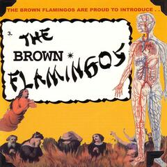 The Brown Flamingos