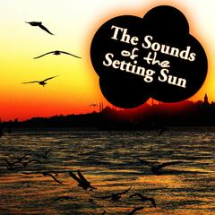 The Sounds Of The Setting Sun