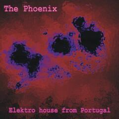 The Phoenix - Elektro House From Portugal