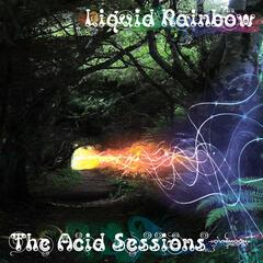 The Acid Sessions Vol. 3