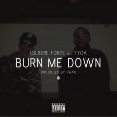 Burn Me Down (feat. Tyga & Raak)