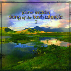 Song of the Irish Whistle 2