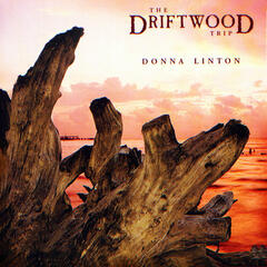 The Driftwood Trip
