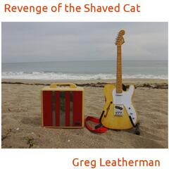 Revenge of the Shaved Cat