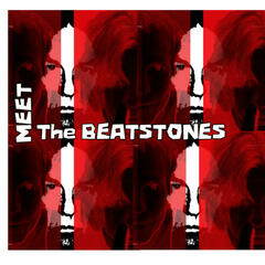 Meet The Beatstones