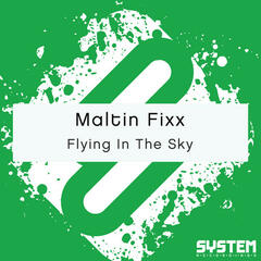 Flying in the Sky - Single