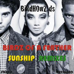 Birdz of a Feather Sunship Remixes